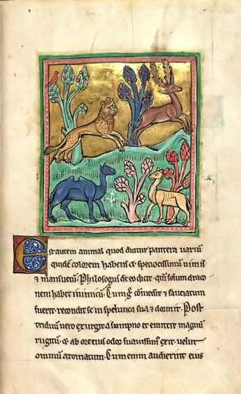 letteratura italiana il bestiario