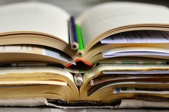 Letteratura italiana Appunti semiseri di studio  1. Le origini