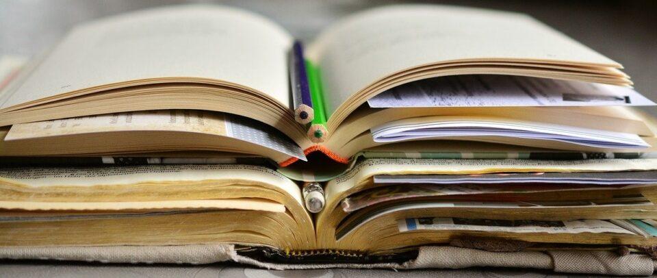appunti di studio della letteratura italiana